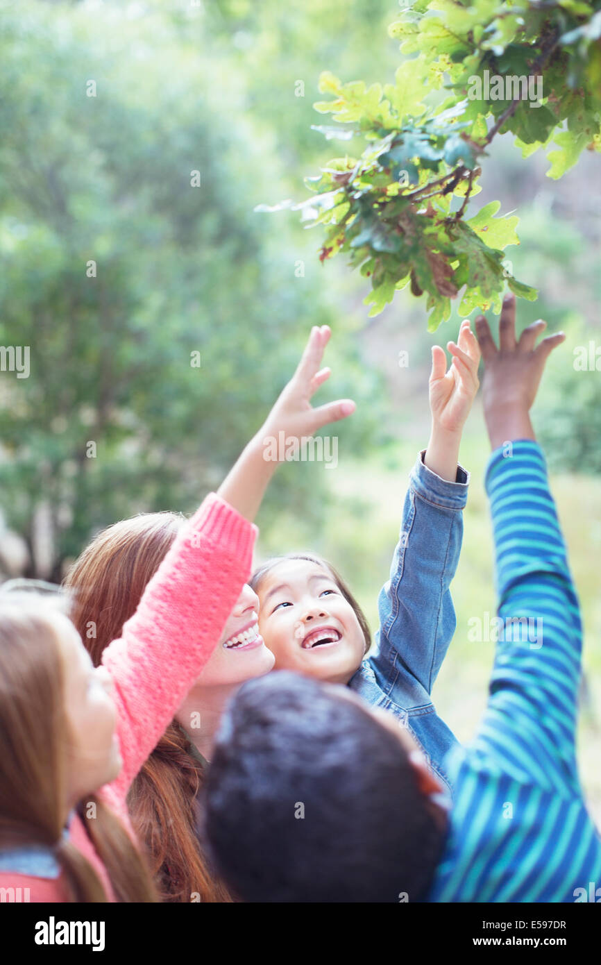 Teacher and students reaching for leaves on tree - Stock Image
