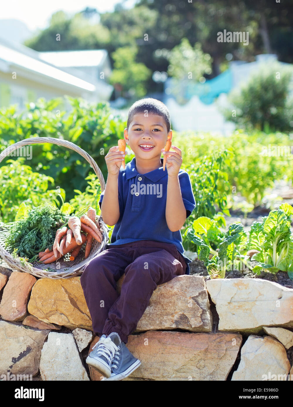 Boy with basket of produce in garden - Stock Image