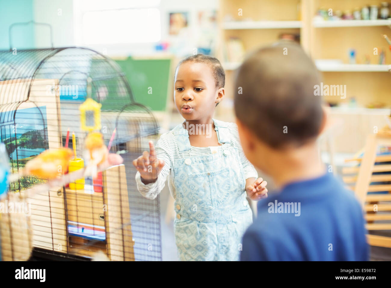 Students examining birdcage in classroom - Stock Image