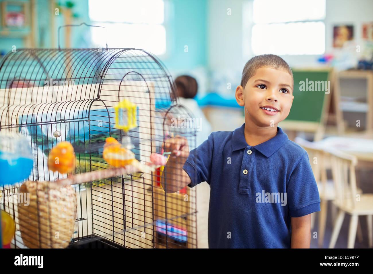 Student examining birdcage in classroom - Stock Image