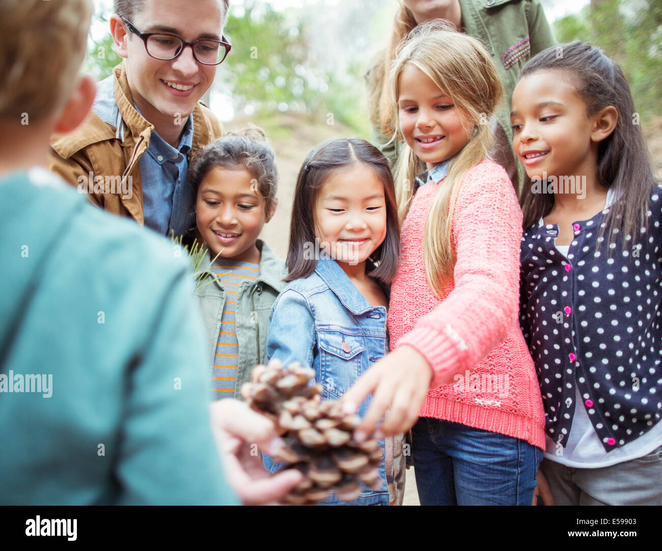 Students and teacher examining pine cone in forest - Stock Image