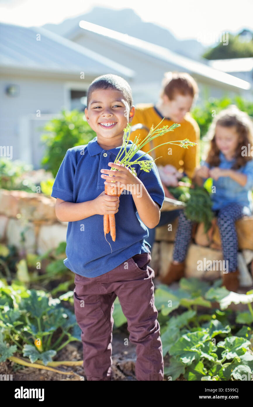 Boy holding bunch of carrots in garden - Stock Image