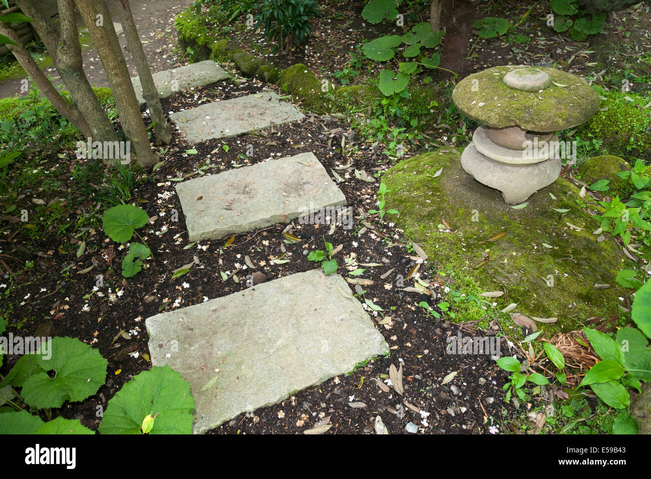 Stone Zen Garden Small stone lantern close to pathway steps in japanese zen garden small stone lantern close to pathway steps in japanese zen garden workwithnaturefo