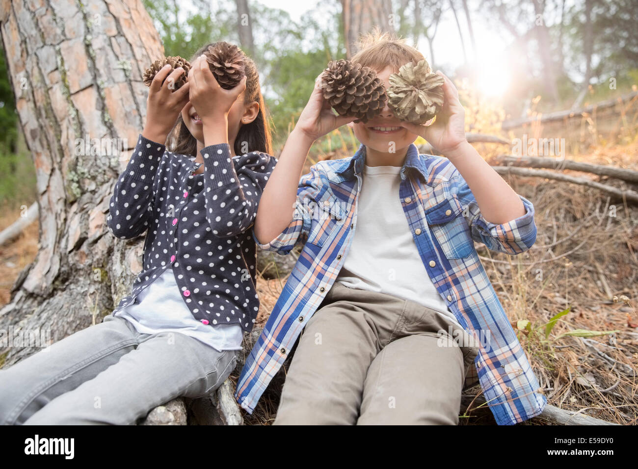 Children playing with pine cones in forest - Stock Image