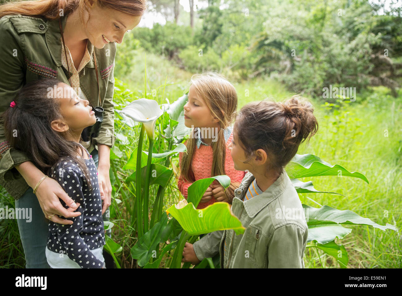 Students and teacher examining plants outdoors - Stock Image