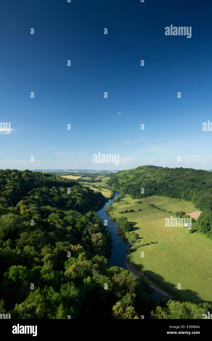 A view from Symonds Yat Rock or the River Wye Valley - Stock Image