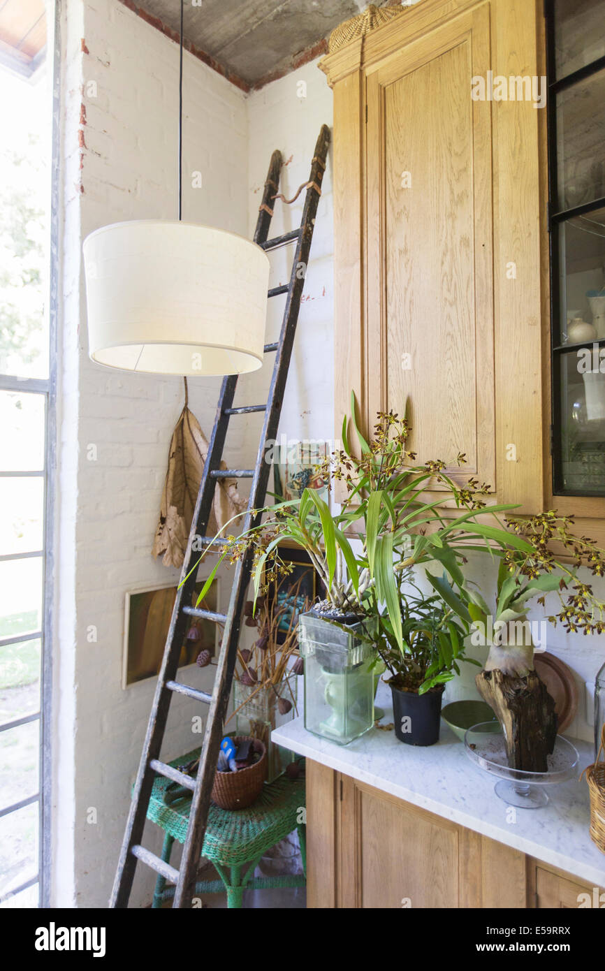 Ladder, plants and cabinets in rustic house - Stock Image