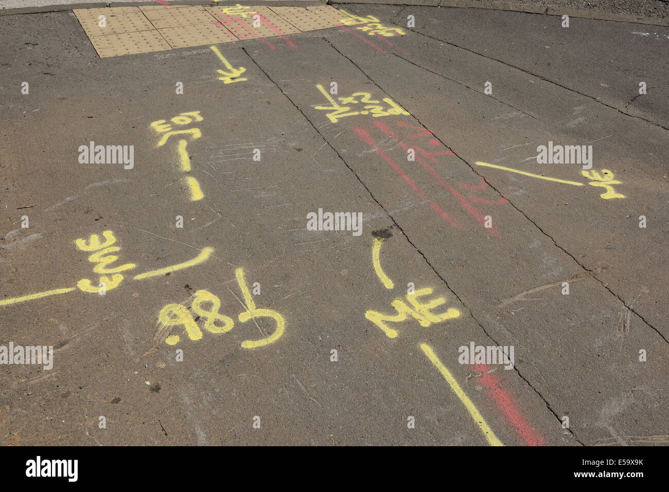 Spray painted lines and markings on a pavement indicating the position of underground utilities - Stock Image