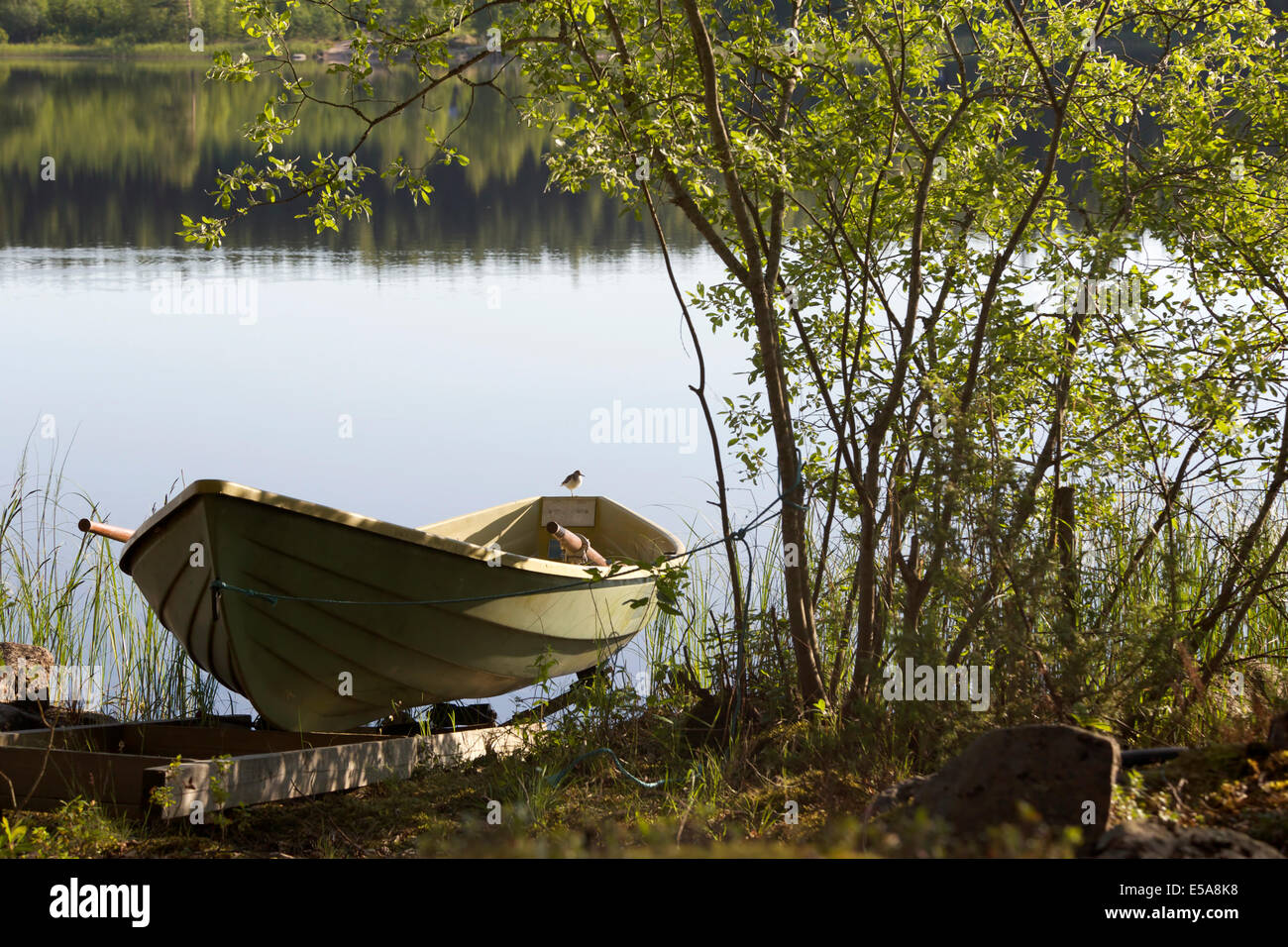 Rowing boat at the lakeside with a bird on its tailboard in summer in Finland - Stock Image