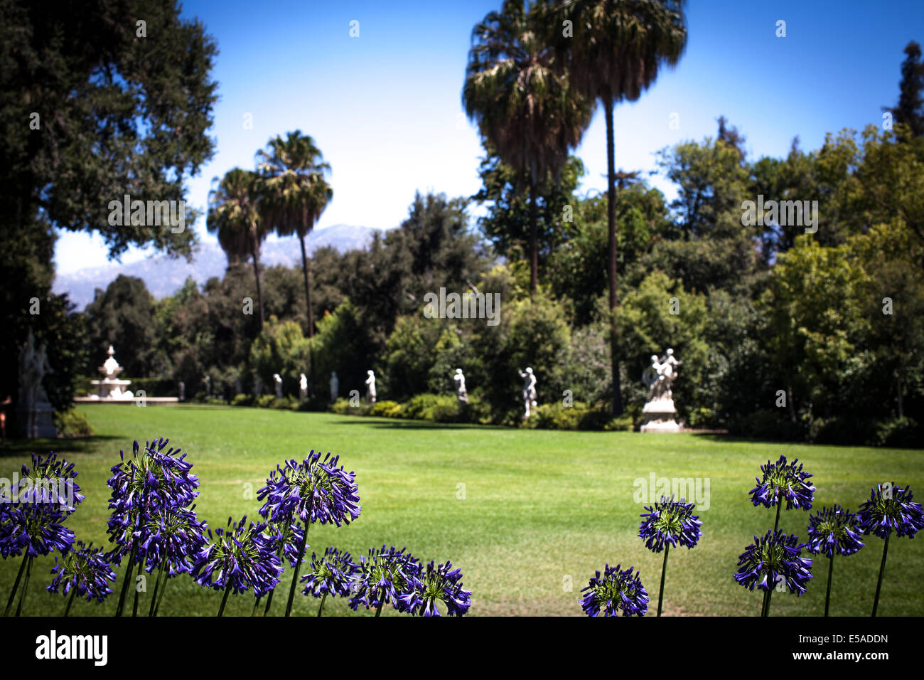 Views of the Huntington Library including the grounds and Japanese Gardens. - Stock Image