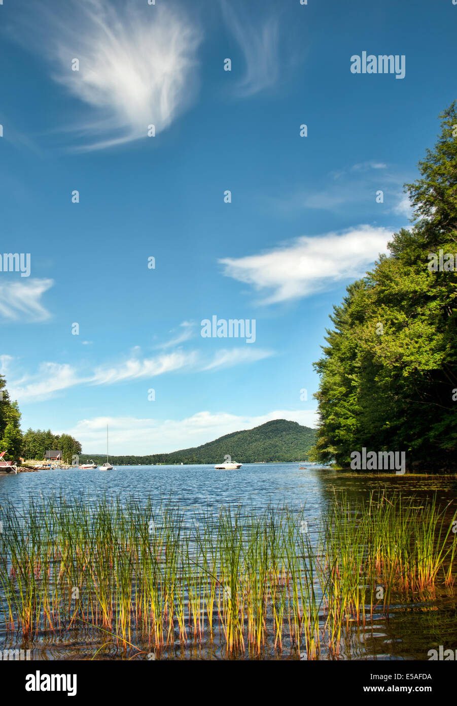 Oxbow Lake in the Adirondack Mountain State Park  in summer - Stock Image