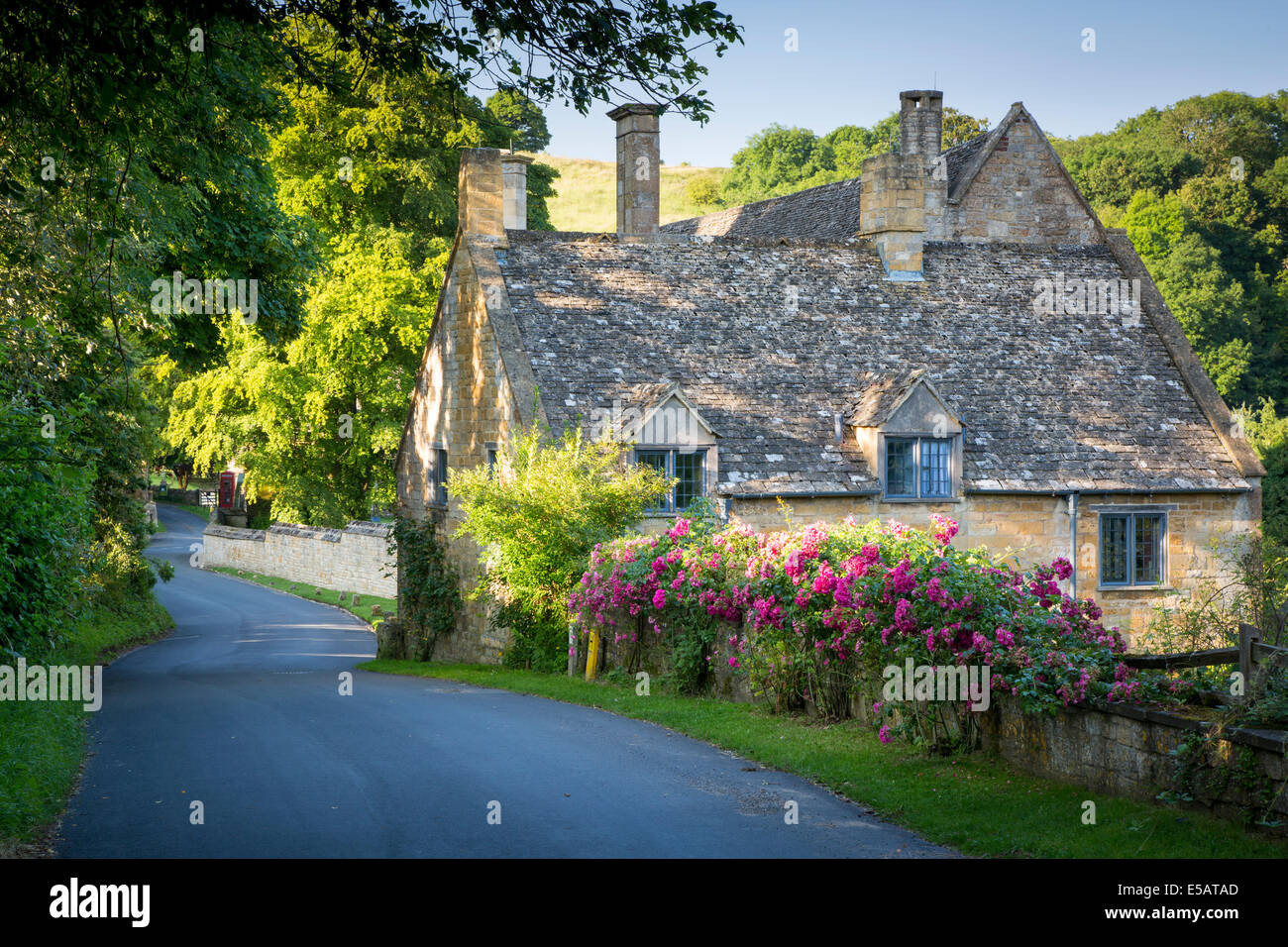 Cottage house behind wall of roses, Snowshill, Gloucestershire, England - Stock Image