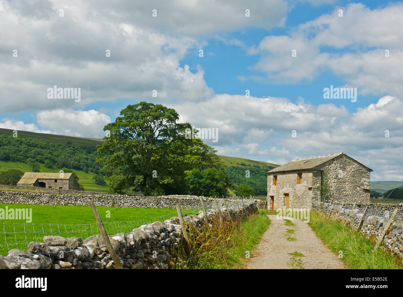 Field-barns in Littondale, Yorkshire Dales National Park, North Yorkshire, England UK - Stock Image