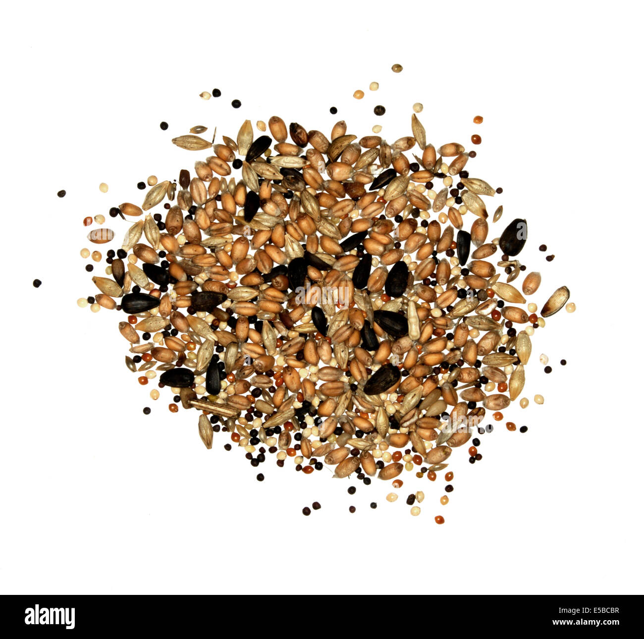 Mixed Birdseed for garden bird feeder - Stock Image