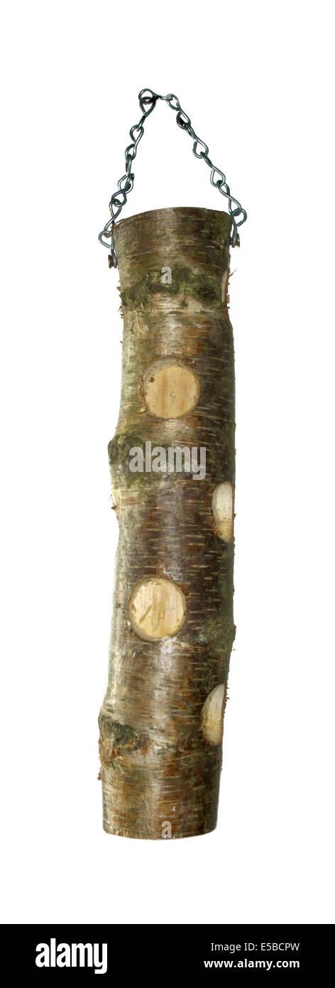 Wooden fat feeder for common garden birds - Stock Image