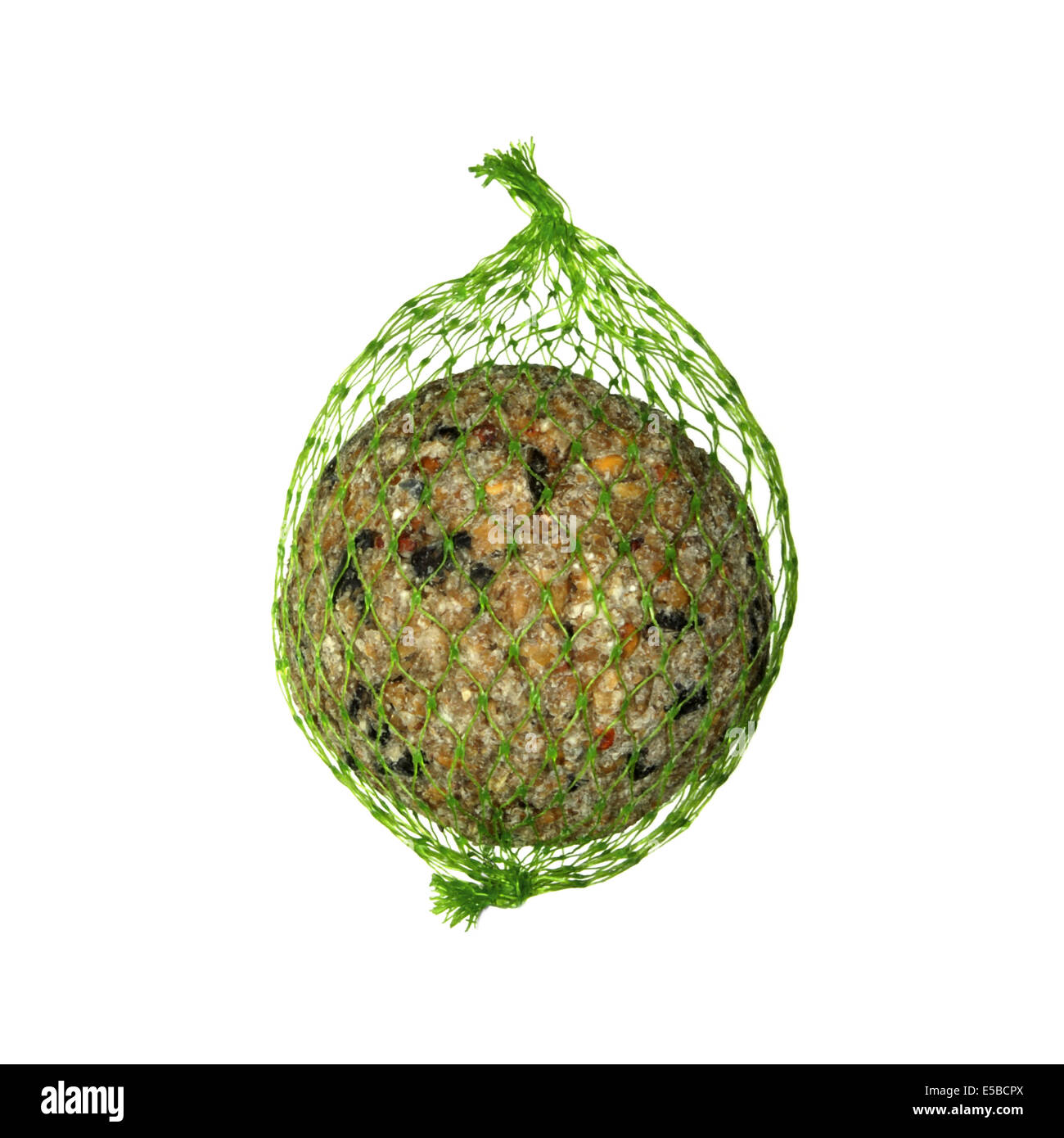Fat Ball for feeding common garden birds - Stock Image