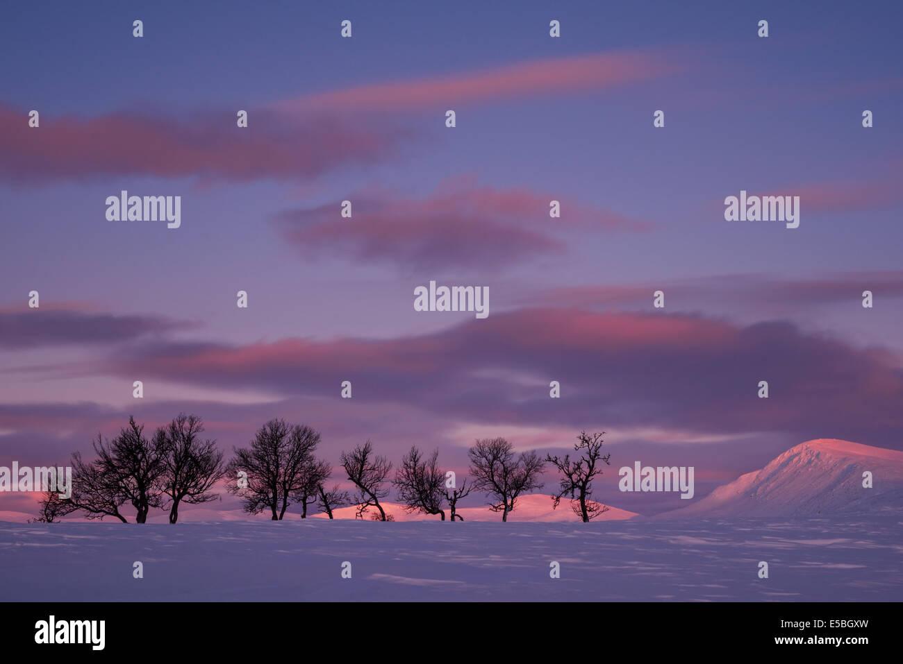 Winter landscape with dramatic sky, Dalarna, Europe - Stock Image