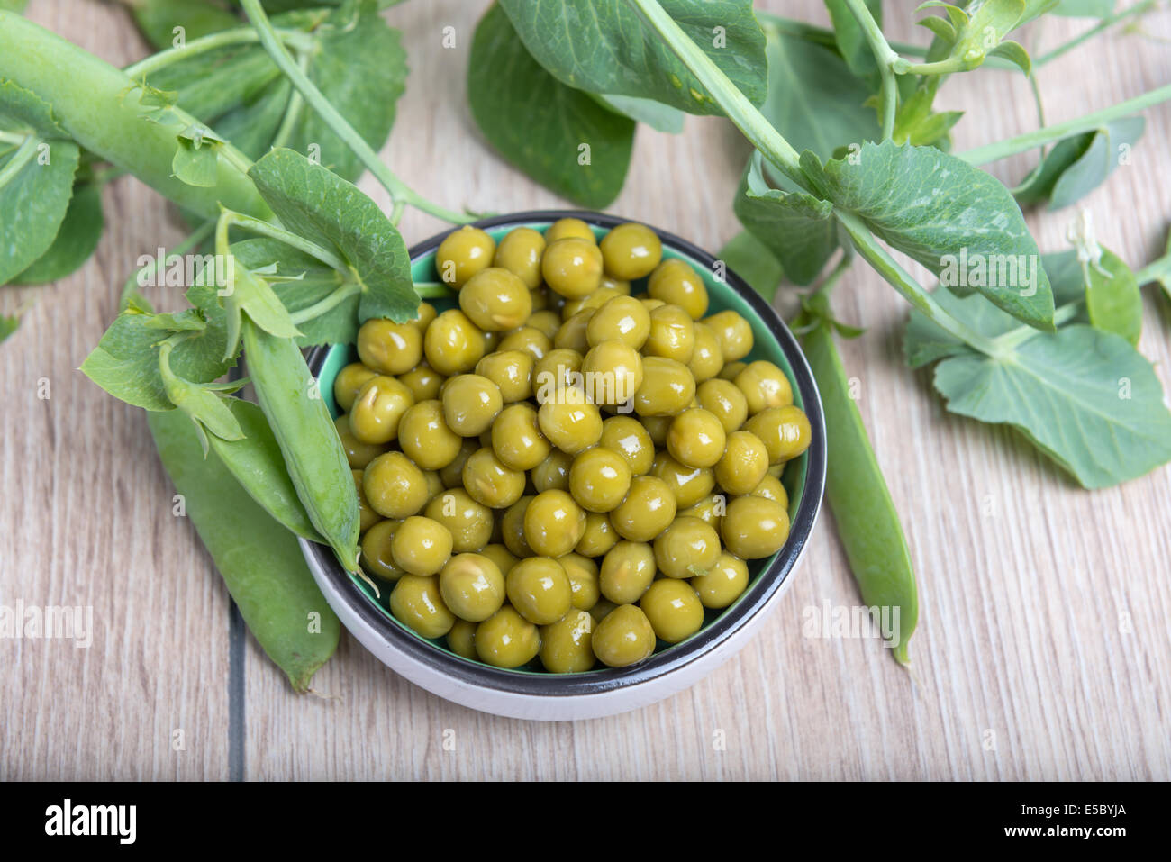 Boiled green peas in a cup, pods and branches - Stock Image