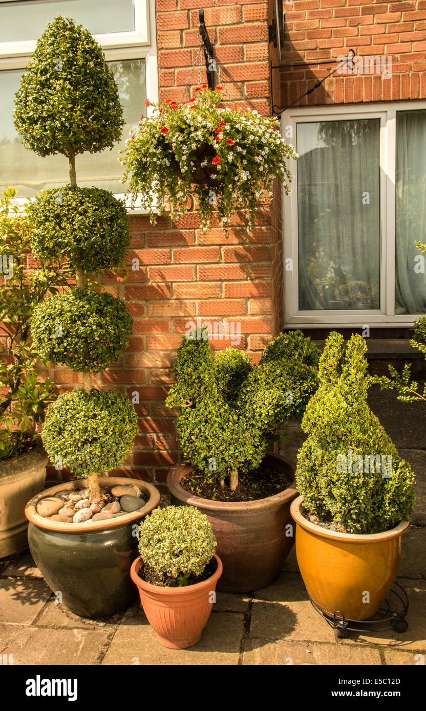 Topiary In A Small Garden In Pots Rabbit Chicken Stock Photo Alamy