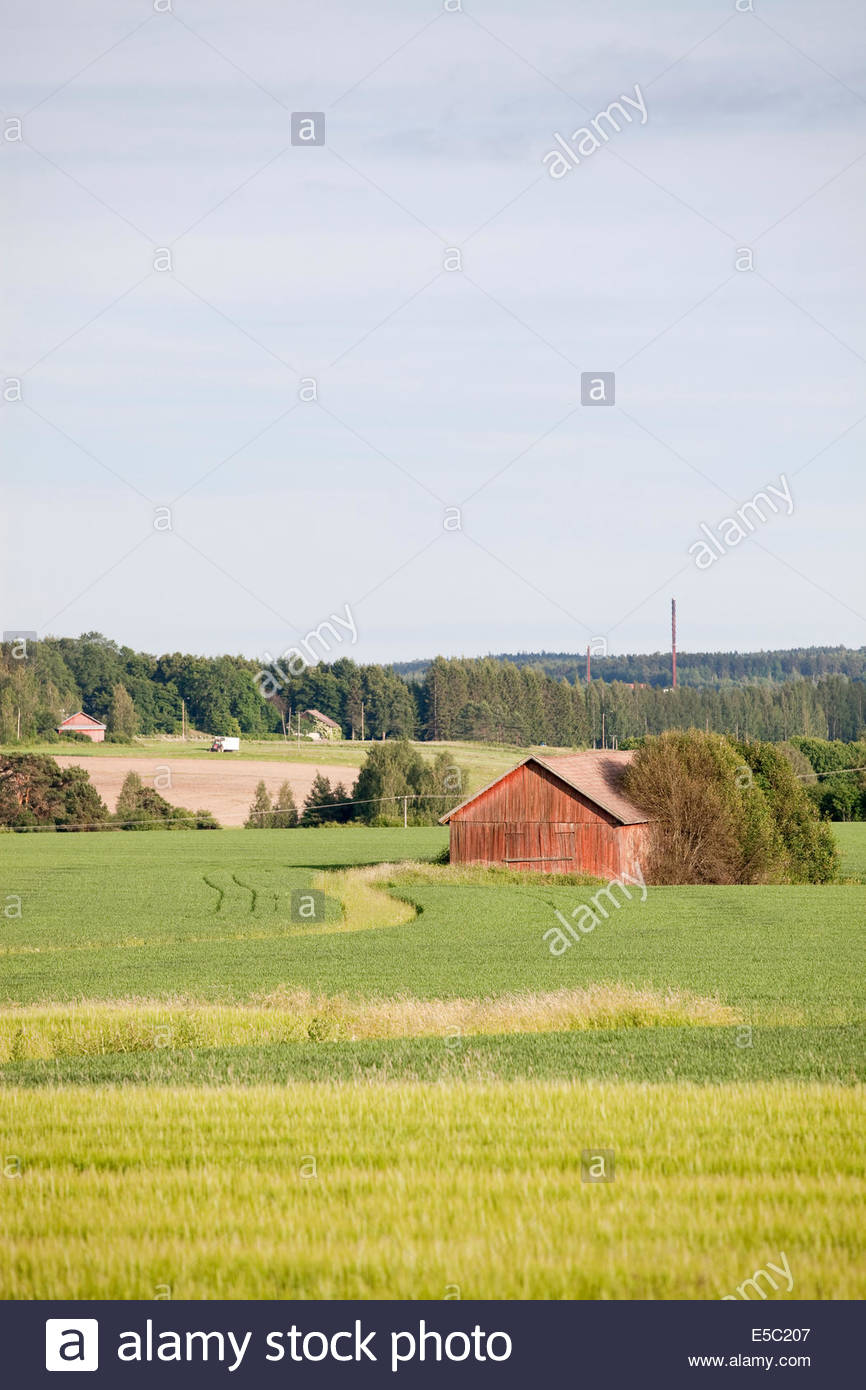 Rural countryside in Finland in summer - Stock Image