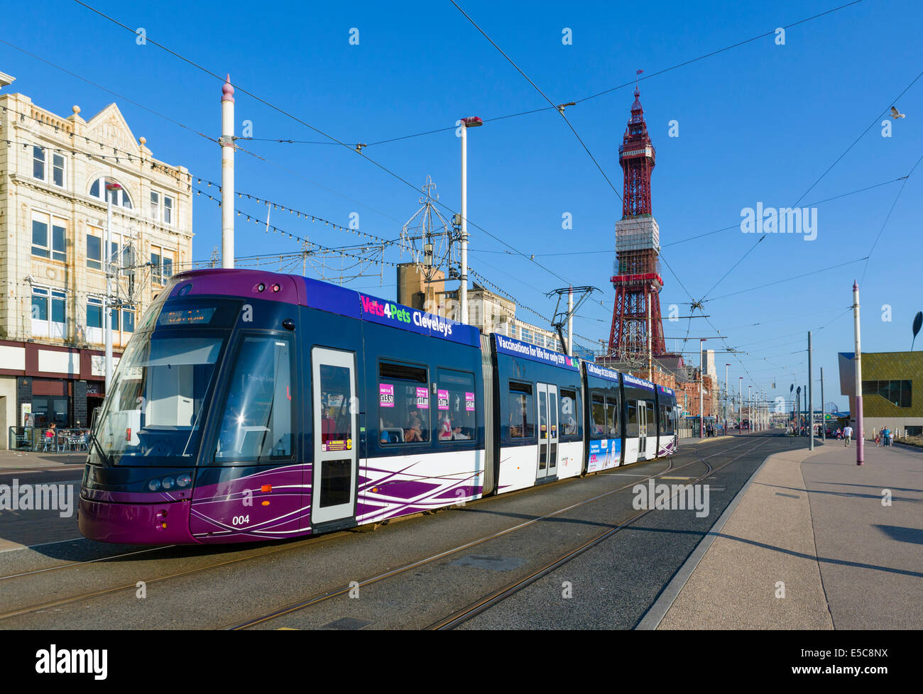 Tram on the promenade in front of Blackpool Tower, The Golden Mile, Blackpool, Lancashire, UK - Stock Image