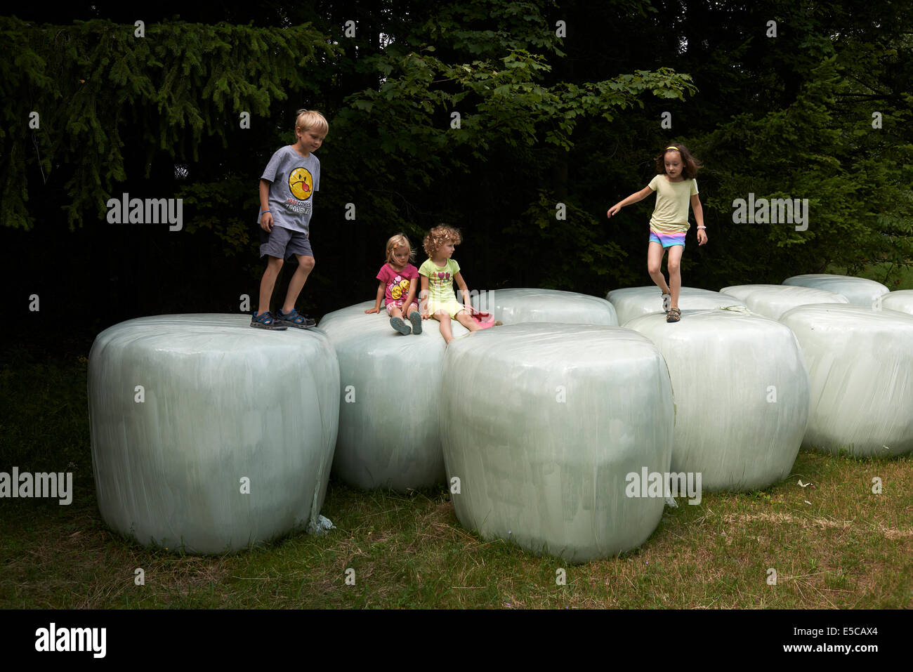 Group of children playing on bales of straw looks like giant teeth, summer time - Stock Image