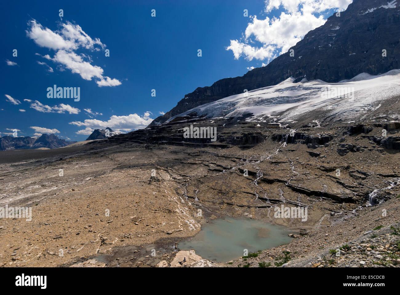 Elk203-2133 Canada, British Columbia, Yoho National Park, Iceland Trail, Emerald Glacier - Stock Image