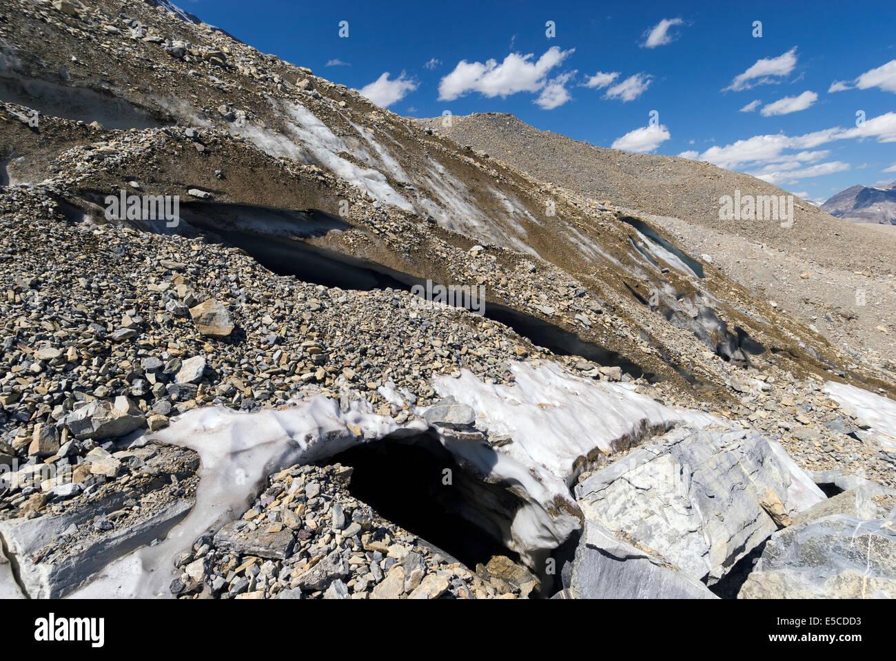 Elk203-2144 Canada, British Columbia, Yoho National Park, Iceland Trail, Emerald Glacier - Stock Image