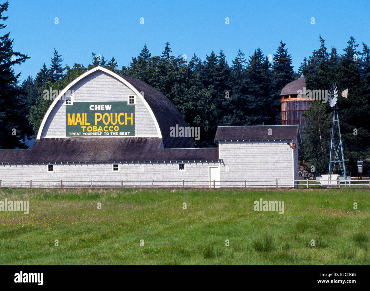 One of thousands of Mail Pouch Tobacco signs painted on the sides of barns across the U.S. is seen on Orcas Island - Stock Image