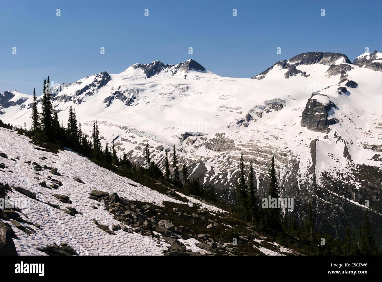 Elk203-2376 Canada, British Columbia, Glacier National Park, Glacier Crest Trail - Stock Image