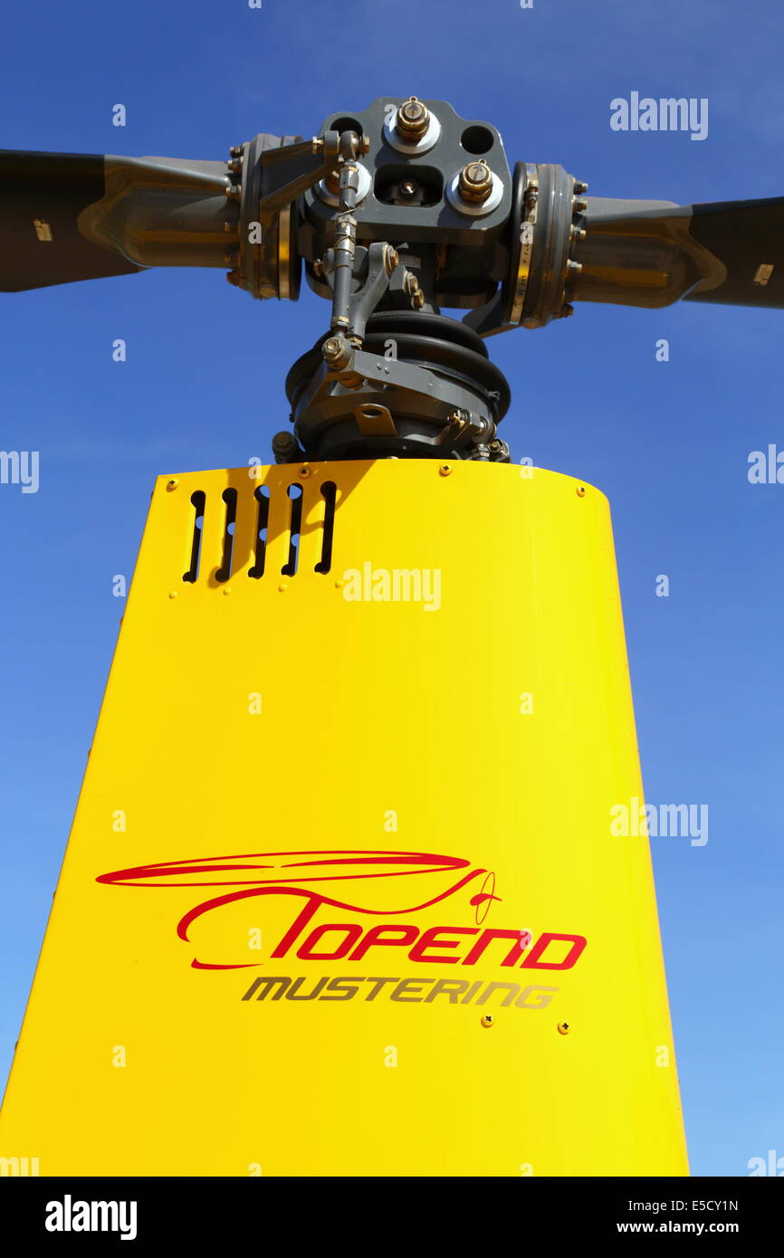 R22 helicopter rotor of a mustering helicopter in the Kimberley, Western Australia. - Stock Image