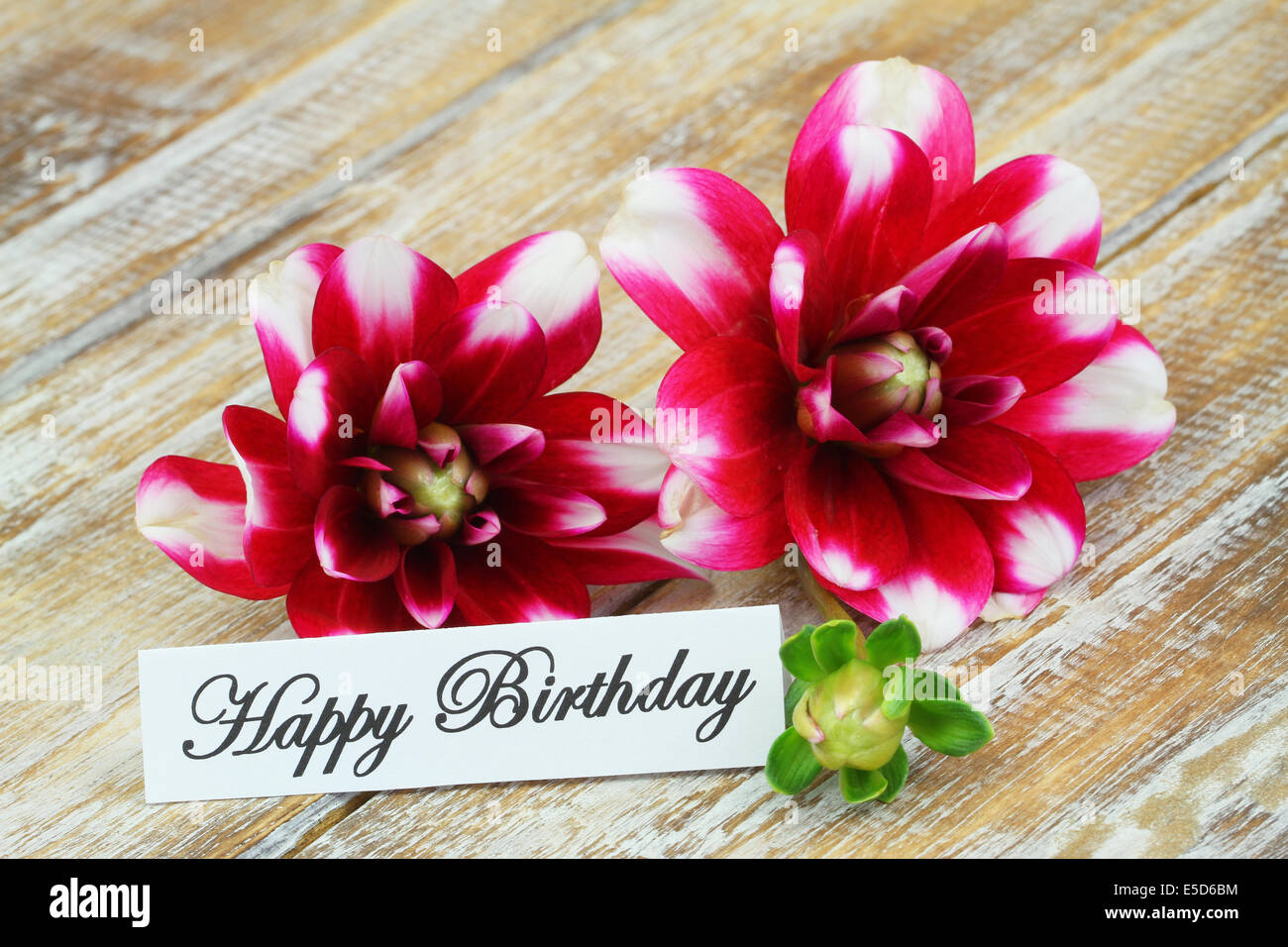 Happy Birthday Card Dahlia Flowers Stock Photos Happy Birthday