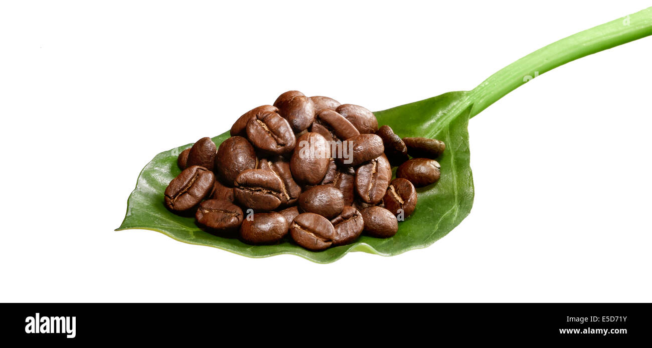 A pile of coffee beans sitting on a leaf to look like a spoon - Stock Image