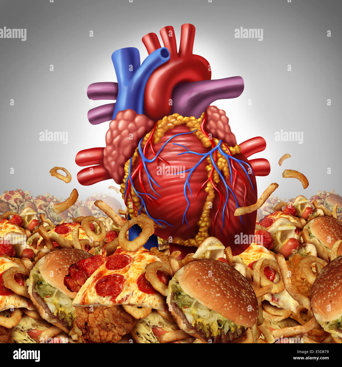 Heart disease risk  symbol and health care and nutrition concept as a human cardiovascular organ drowning in an - Stock Image