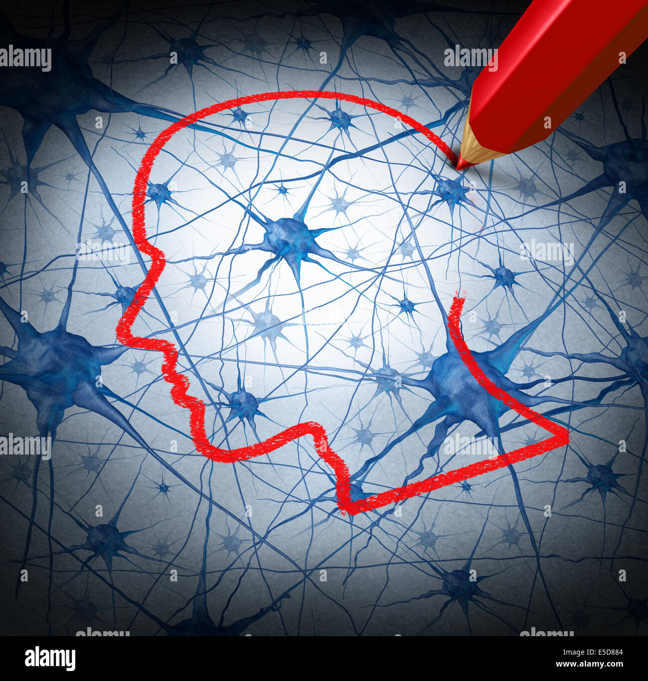 Neurology research concept examining the neurons of a human head to heal memory loss or cells due to dementia and - Stock Image