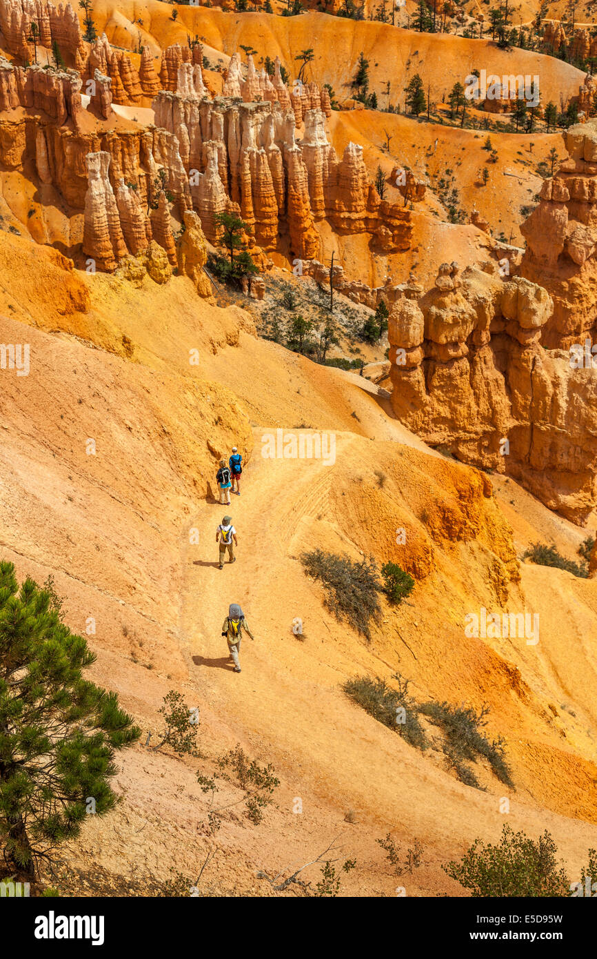 Tracking in Bryce Canyon,Utah,USA - Stock Image