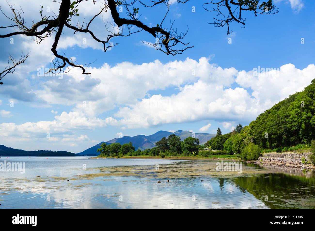 Skiddaw massif from Derwentwater, Borrowdale, Lake District, Cumbria, UK - Stock Image