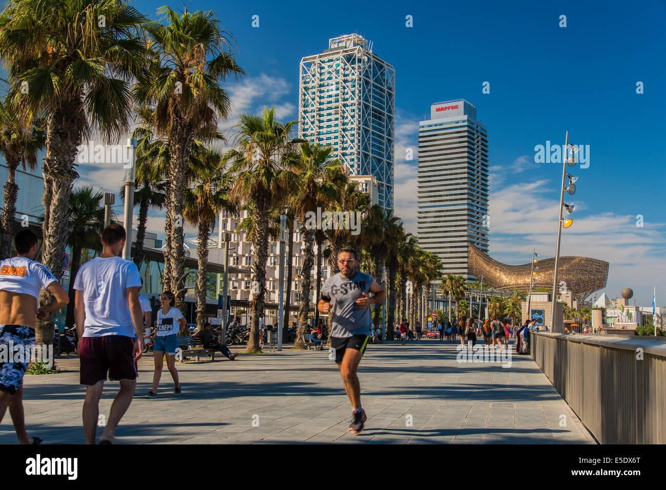 Avinguda del Litoral, Vila Olimpica, Barcelona, Catalonia, Spain - Stock Image