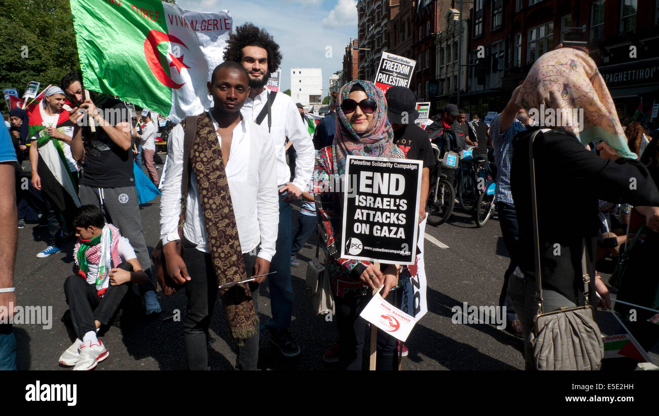 Pro Palestinian protestors with Algerian flag and 'End Israeli attacks on Gaza' placard in London UK  19.7.2014 - Stock Image