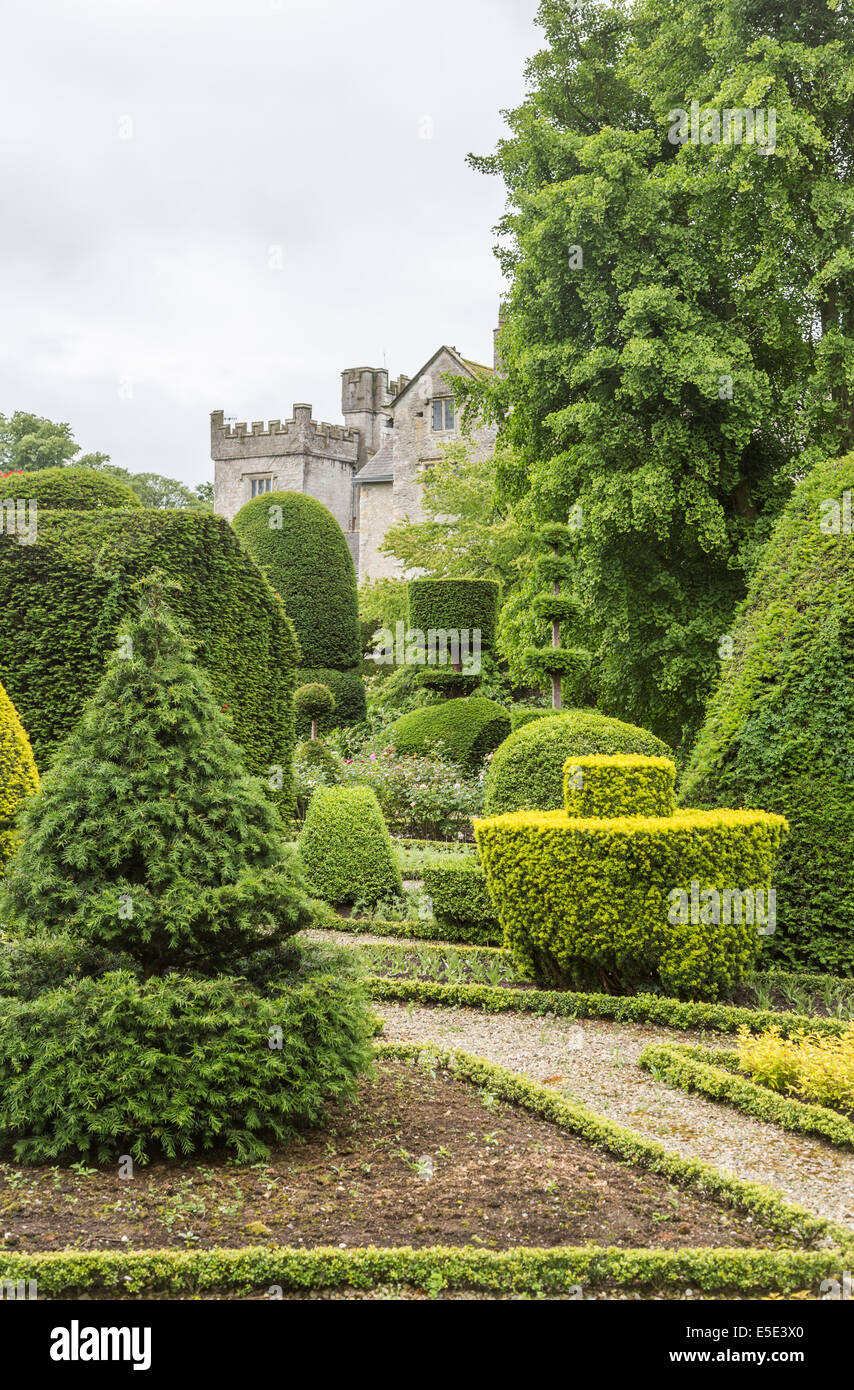 Extraordinary topiary hedges in the gardens of Levens Hall, near Kendal, Cumbria - Stock Image