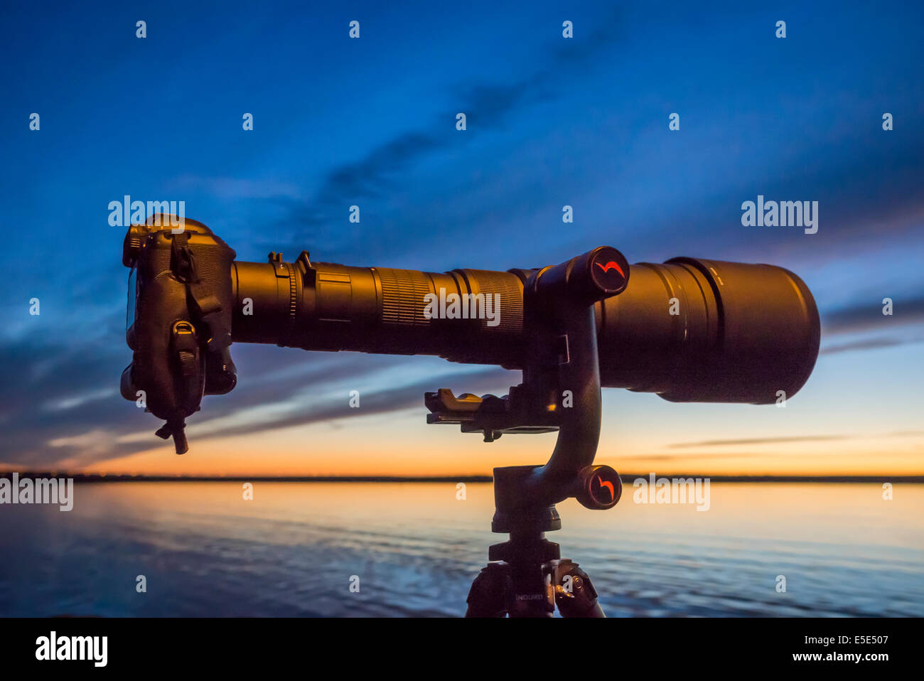 Sigmonster 200-800 mm telephoto zoom lens. - Stock Image