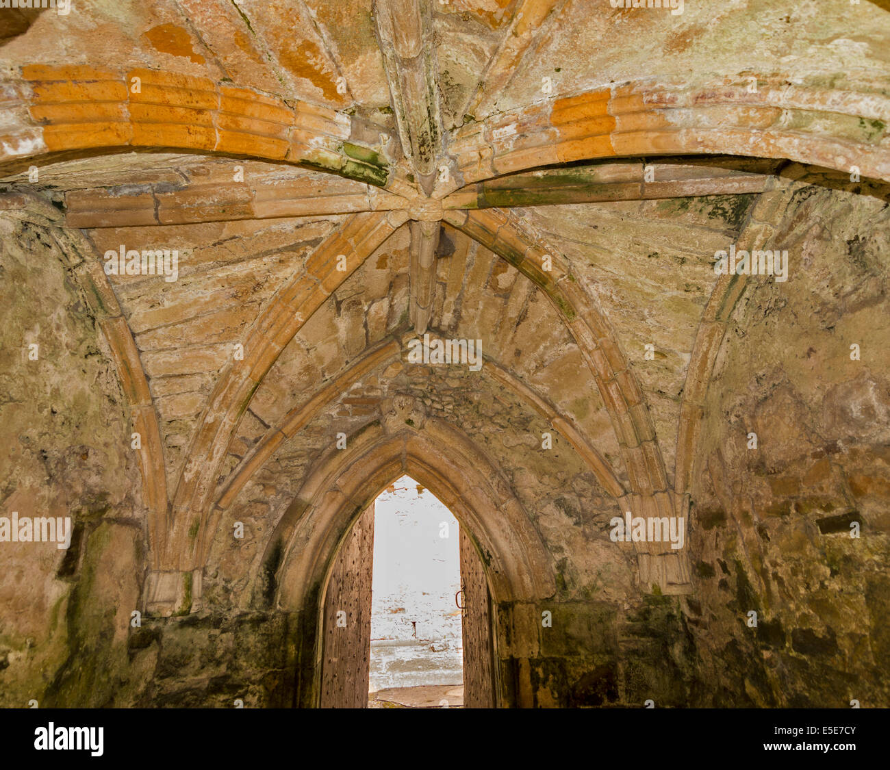 ST.PETER'S KIRK OR CHURCH DUFFUS MORAY INTERIOR VAULTING OF THE PORCH - Stock Image