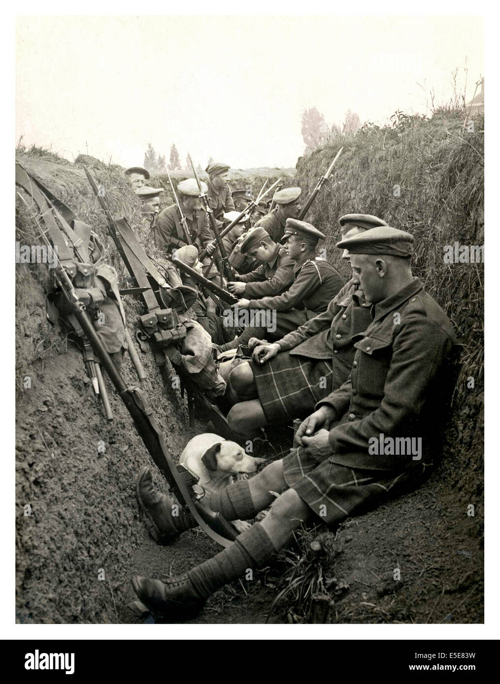 Historic image of WW1 Highland territorials and their mascot dog wait to 'go over the top' in a trench in - Stock Image