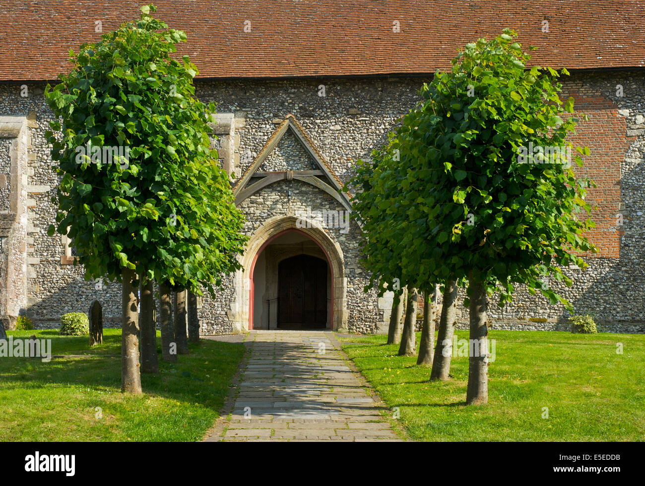 Tree-lined path to All Saints Church, Odiham, Hampshire, England uk - Stock Image