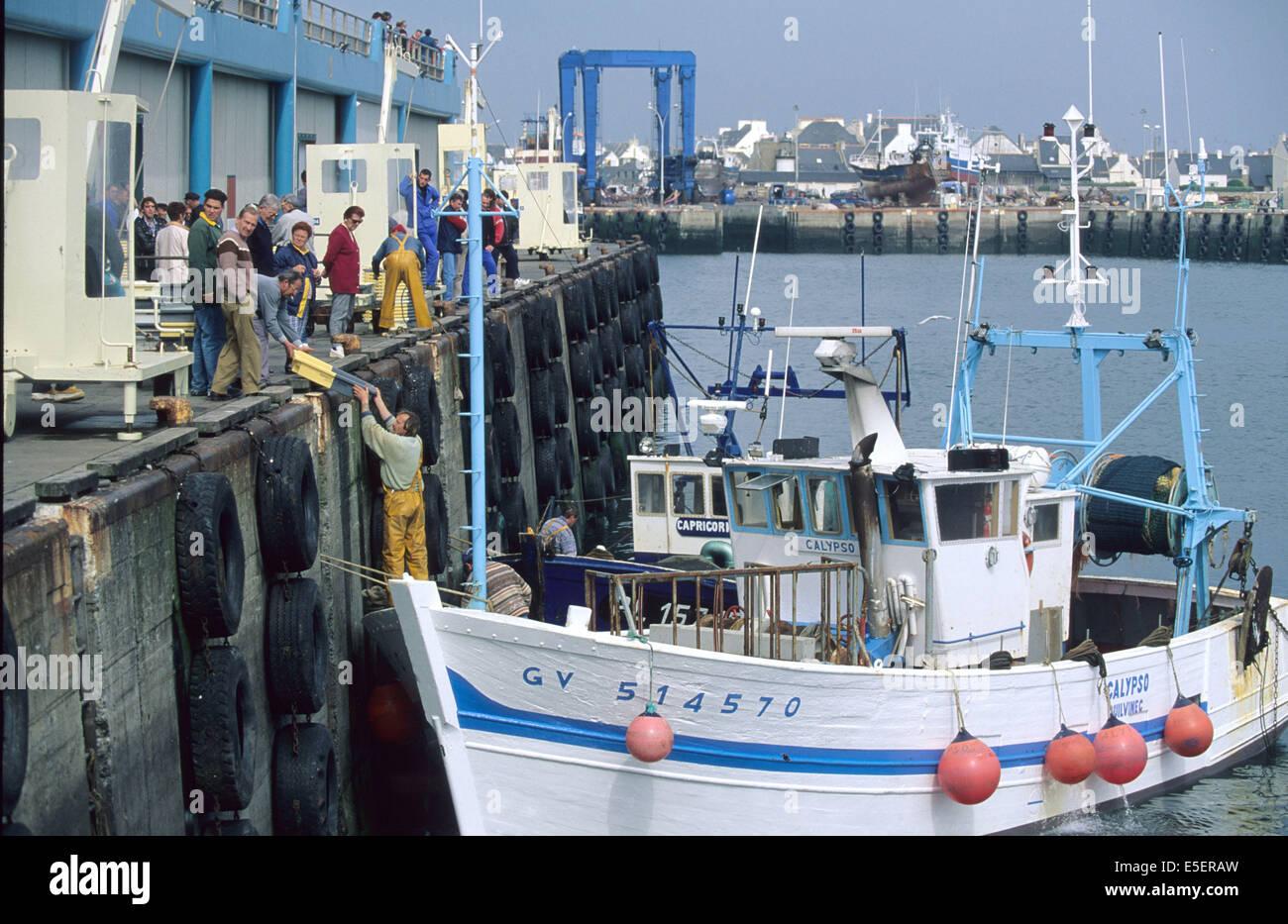 France, Bretagne, finistere sud, pays bigouden, le guilvinec, port de peche, retour de pechehalle a maree, criee, Stock Photo