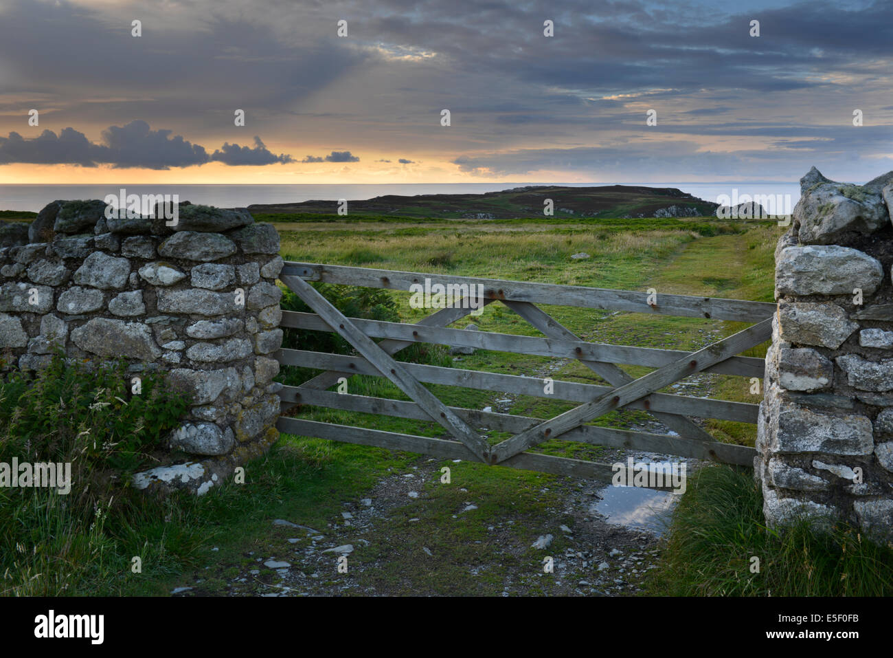 Footpath from the North End of Lundy Island looking south - Stock Image
