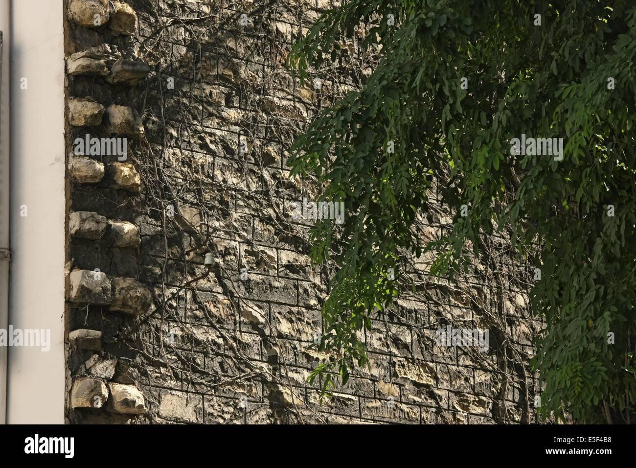 France, Ile de France, paris 7e arrondissement, rue saint simon, n9/11, raccordements de facades et pierres d'attente, - Stock Image