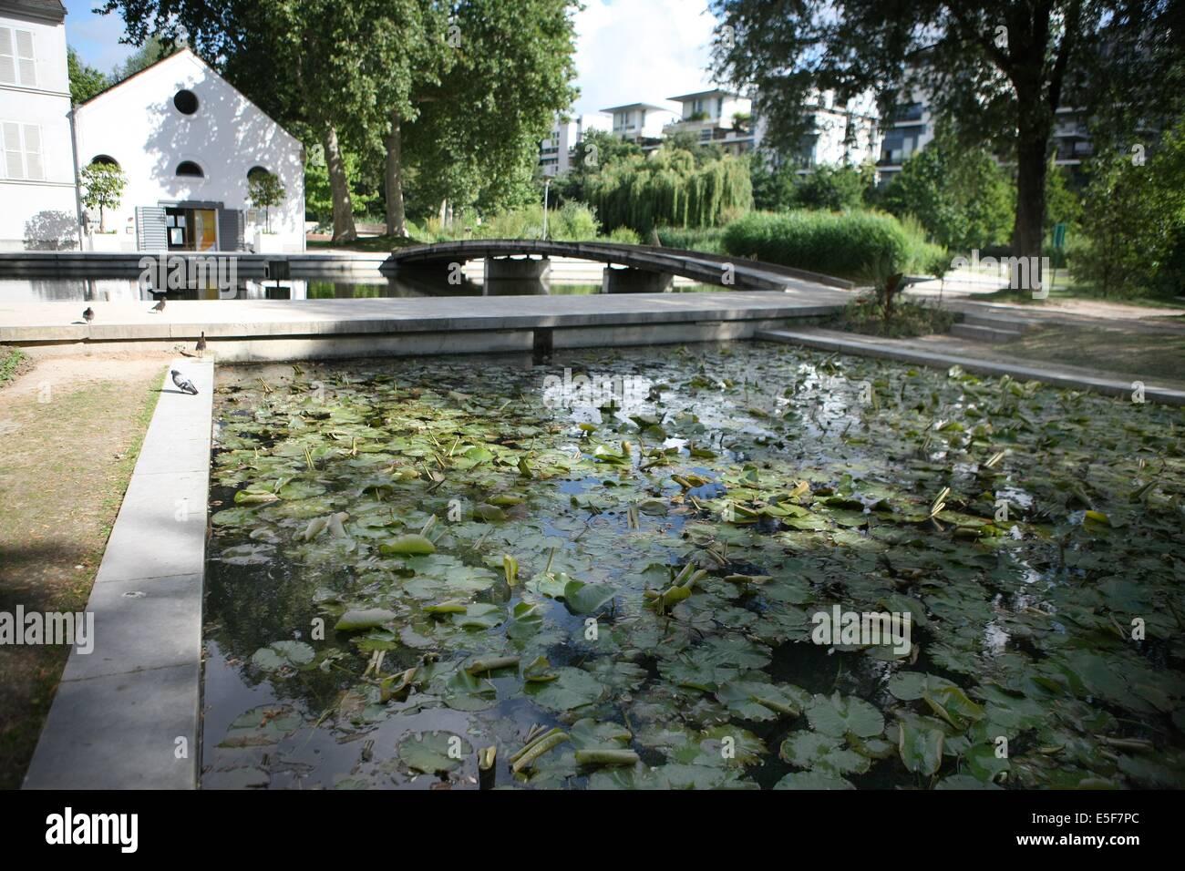France, ile de france, paris, 12e arrondissement, bercy, parc de bercy, plan d'eau, nenuphars  Date : 2011-2012 - Stock Image