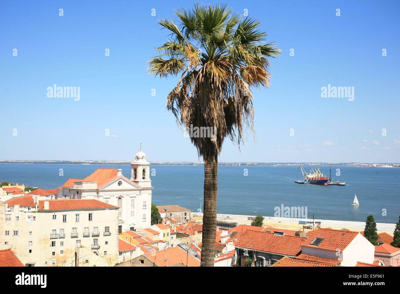 portugal, lisbonne, lisboa, signes de ville, alfama, panorama sur toits et le tage, paysage, toits, tuiles, palmier - Stock Image