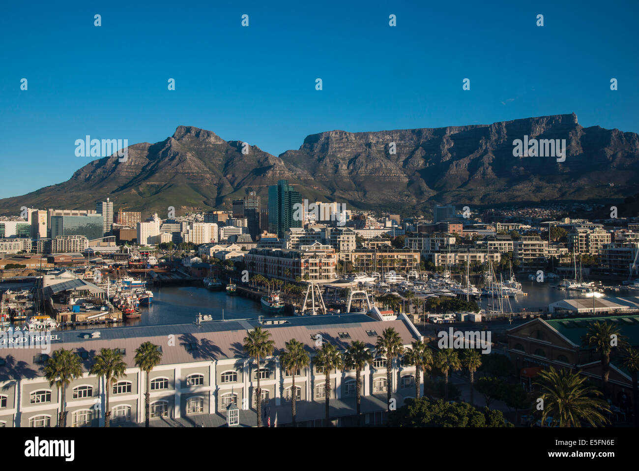 Victoria and Alfred Waterfront, from Cape Wheel, Devil's Peak and Table Mountain at the back, Cape Town, Western - Stock Image